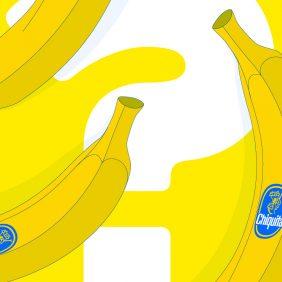 Ontdek de bananen van het beste bananenmerk