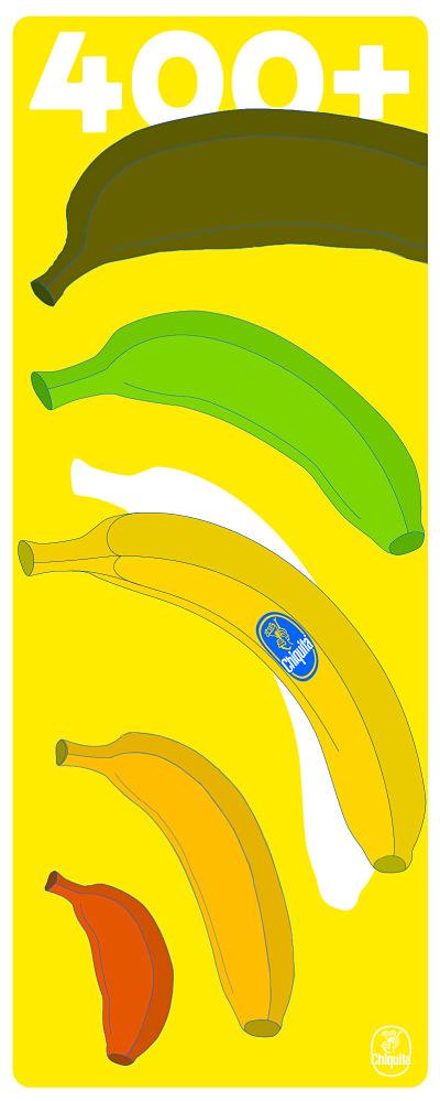 Wat maakt de beste banaan?